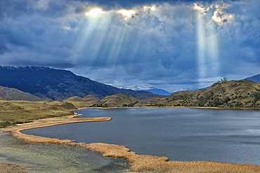Laguna with marsh grass, Patagonia National Park, Chacabuco valley near Cochrane, Aysen Region, Patagonia, Chile, South America