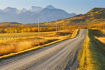 Country road through a mountainous landscape, near Twin Butte, Alberta, Canada, North America