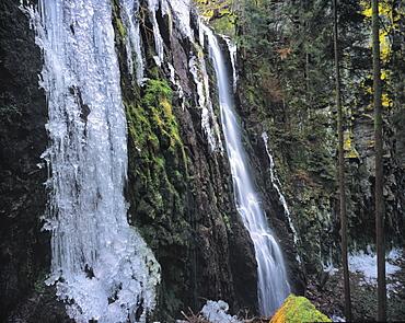 Ice sculptures, Burgbach Waterfall, Bad Rippldsau-Schappach, Black Forest, Baden Wurttemberg, Germany, Europe