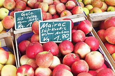 Apples at a market stall, weekly market, market place, Esslingen, Baden Wurttemberg, Germany, Europe
