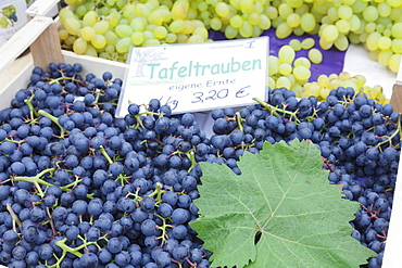 Blue and white wine grapes at a market stall, weekly market, market place, Esslingen, Baden Wurttemberg, Germany, Europe