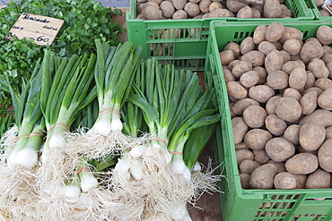Onions, potatoes and coriander at a market stall, weekly market, market place, Esslingen, Baden Wurttemberg, Germany, Europe