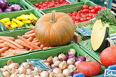 Pumpkin, onions, zucchini (courgettes), carrots, tomatoes and beans at a market stall, weekly market, market place, Esslingen, Baden Wurttemberg, Germany, Europe