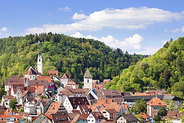 Old town with Stiftskirche Heilig Kreuz collegiate church, Horb am Neckar, Black Forest, Baden Wurttemberg, Germany, Europe