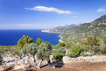 Cala de Deia, North Coast, Sierra de Tramuntana, UNESCO  World Heritage, Majorca (Mallorca), Balearic Islands, Spain, Mediterranean, Europe