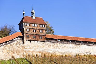 Castle with vineyards in autumn, Esslingen, Baden Wurttemberg, Germany, Europe