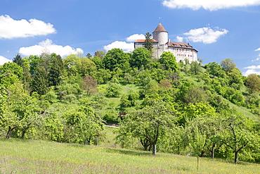 Burg Reichenberg Castle, Oppenweiler, Swabian Forest, Rems Murr District, Baden Wurttemberg, Germany, Europe