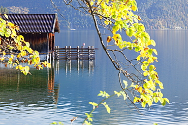 Boat house at Walchensee Lake in autumn, Bavarian Alps, Upper Bavaria, Bavaria, Germany, Europe