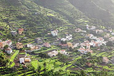 Terraces, Valle Gran Rey, La Gomera, Canary Islands, Spain, Europe