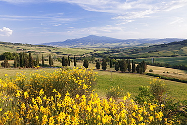 Tuscan landscape  with Monte Amiata, near Pienza, Val d'Orcia (Orcia Valley), UNESCO World Heritage Site, Siena Province, Tuscany, Italy, Europe