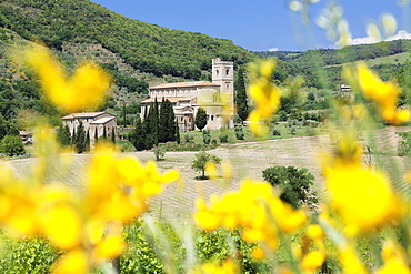 Sant Antimo Abbey, monastery, Castelnuovo dell'Abate, near Montalcino, Val d'Orcia (Orcia Valley), Siena Province, Tuscany, Italy, Europe