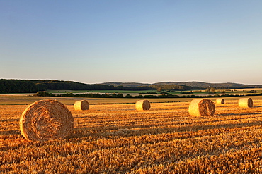 Hay bales at sunset, Swabian Alps, Baden-Wurttemberg, Germany, Europe