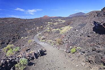 Ruta de los Volcanes hiking path, Teneguia Volcano left, San Antonio Volcano middle, Monumento Natural de los Volcanes de Teneguia, La Palma, Canary Islands, Spain, Europe