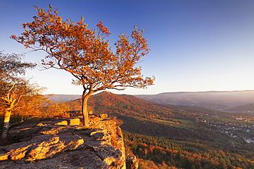 View from Battert Rocks, Merkur Mountain, Baden Baden, Black Forest, Baden Wurttemberg, Germany, Europe