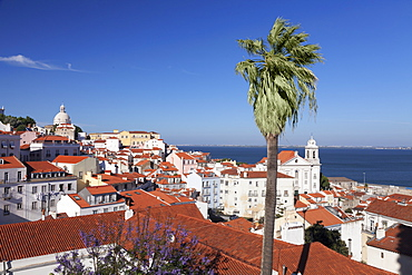 View from Santa Luzia viewpoint over Alfama district to Tejo River, Lisbon, Portugal, Europe