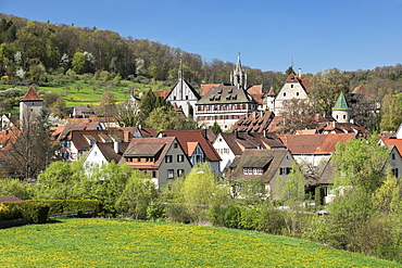 Bebenhausen Monastery near Tuebingen, Schoenbuch Nature Park, Baden-Wurttemberg, Germany, Europe