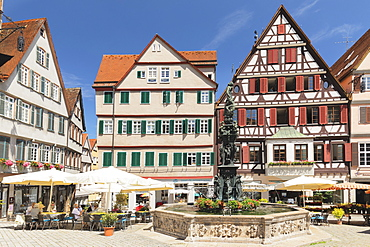 Street cafes at Neptunbrunnen fountain, market square, Tubingen, Baden-Wurttemberg, Germany, Europe
