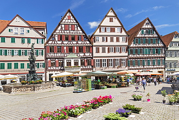 Market day at market square, Tubingen, Baden-Wurttemberg, Germany, Europe
