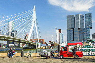 Nieuwe Maas River, Erasmus Bridge and Skyline, Rotterdam, South Holland, Netherlands, Europe