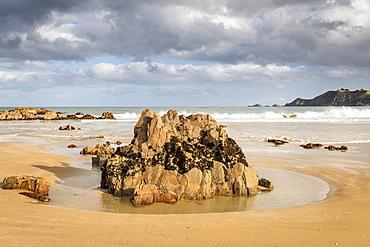 Molyneux Bay, Otago, South Island, New Zealand, Pacific