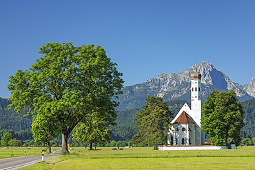 Pilgrimage church of St. Coloman, Schwangau, Allgau, Schwaben, Bavaria, Germany, Europe