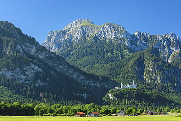 Neuschwanstein Castle and Lechtaler Alps, Schwangau, Allgau, Schwaben, Bavaria, Germany, Europe