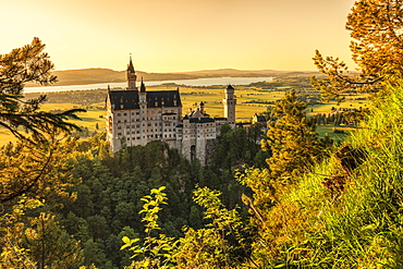 Neuschwanstein Castle at sunset, view to Forggensee Lake, Schwangau, Allgau, Schwaben, Bavaria, Germany, Europe