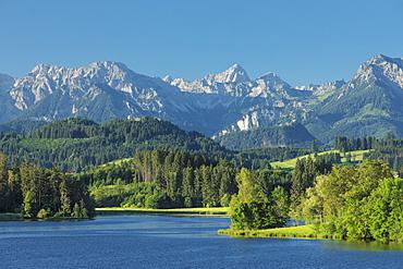 Schwaltenweiher Lake, Seeg, Allgau Alps, Allgau, Schwaben, Bavaria, Germany, Europe