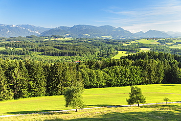 View from at Ratzinger Hoehe to Chiemgau Alps, Riemsting, Upper Bavaria, Germany, Europe