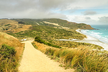 Sandfly Bay, Dunedin, Otago, South Island, New Zealand, Pacific