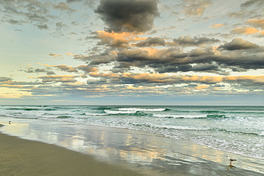 St. Clair Beach at sunset, Dunedin, Otago, South Island, New Zealand, Pacific