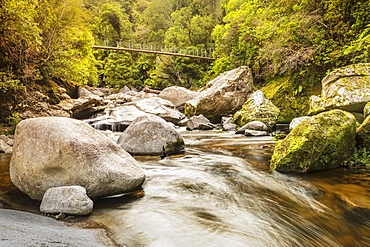 Suspension Bridge over Wainui River, Wainui Falls Track, Golden Bay, Tasman, South Island, New Zealand, Pacific