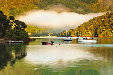Queen Charlotte Sound and Momorangi Bay at sunrise, Marlborough Sounds, Picton, South Island, New Zealand, Pacific