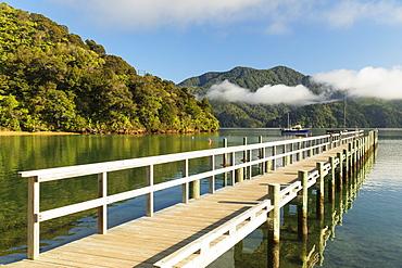 Ngakuta Bay, Marlborough Sounds, Picton, South Island, New Zealand, Pacific