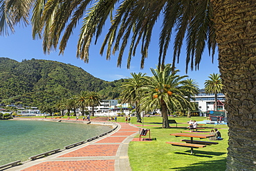 Promenade at the harbour of Picton, Marlborough Sounds, South Island, New Zealand, Pacific