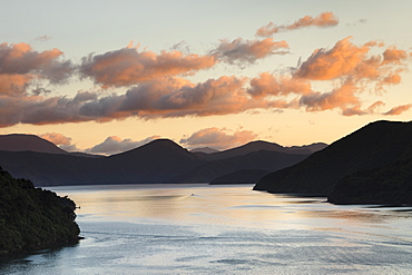 Queen Charlotte Sound at sunrise, Marlborough Sounds, Picton, South Island, New Zealand, Pacific