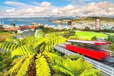 Cable Car, view over Wellington, North Island, New Zealand, Pacific
