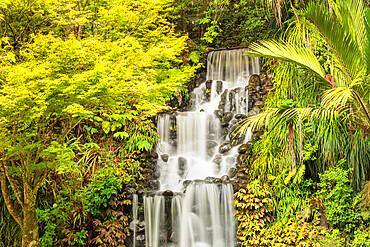 Waterfall in Pukekura Park, botanical garden, New Plymouth, Taranaki, North Island, New Zealand, Pacific
