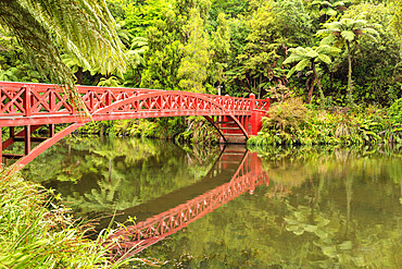 Pukekura Park, botanical garden, New Plymouth, Taranaki, North Island, New Zealand, Pacific