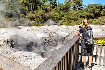 Wai-O-Tapu Thermal Wonderland, Rotorua, Bay of Plenty, North Island, New Zealand, Pacific