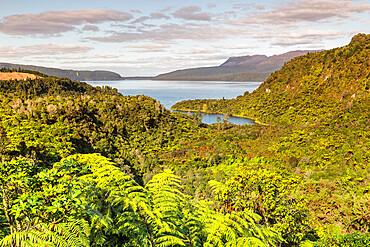 Lake Tarawera, Rotorua, North Island, New Zealand, Pacific
