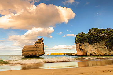 Beach of Mare's Leg Cove, Cathedral Cove Marina Reserve, Coromandel Peninsula, Waitako, North Island, New Zealand, Pacific
