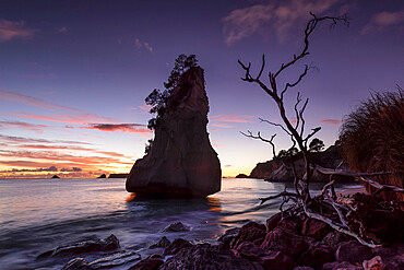 Cathedral Cove at sunrise, Cathedral Cove Marina Reserve, Coromandel Peninsula, Waitako, North Island, New Zealand, Pacific