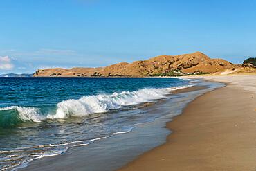 Otama Beach, near Whitianga Village, Coromandel Peninsula, Waikato, North Island, New Zealand, Pacific - 1160-4554