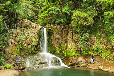 Waiau Falls, Waikato, Coromandel Peninsula, North Island, New Zealand, Pacific - 1160-4559