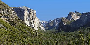 Tunnel View, Yosemite Valley with El Capitan, Yosemite National Park, California, USA
