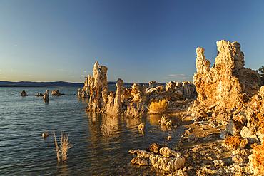 Tufa formations at Mono Lake, South Tufa State Reserve, Sierra Nevada, California, USA