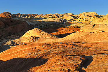 Fire Wave, Valley of Fire State Park, Nevada, USA