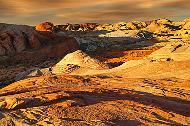 Fire Wave at sunset, Valley of Fire State Park, Nevada, USA