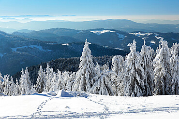 View from Hornisgrinde mountain in winter, Black Forest, Baden Wurttemberg, Germany, Europe